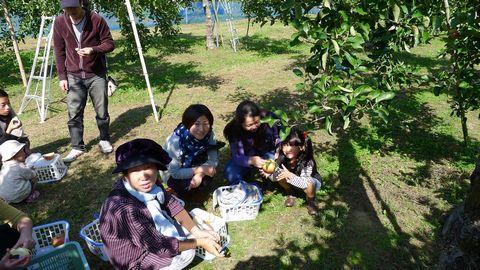 murakami-ringo.jpg